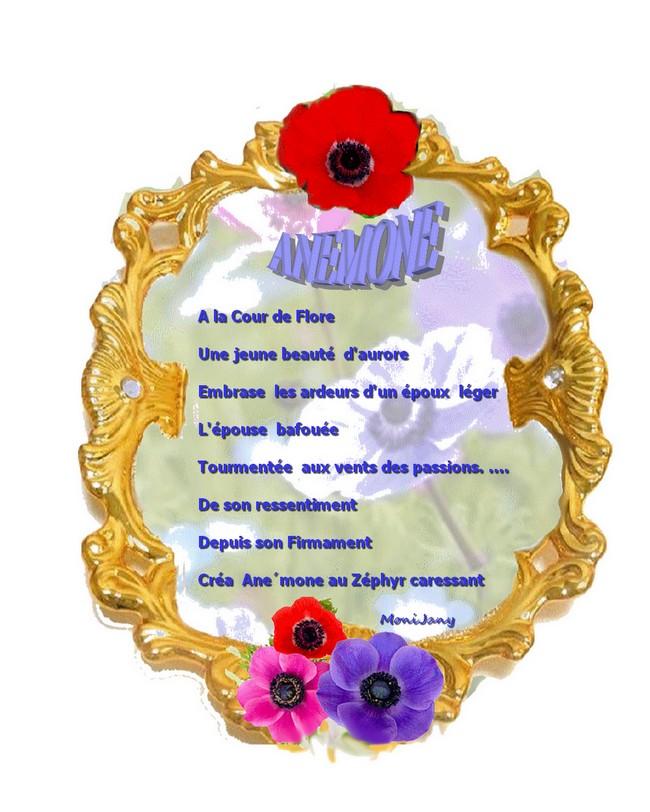 Anemone fin